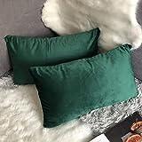 Douceur De Plumes Lot de 2 Housse de Coussin décorative Vert Foncé Velours 30x50 cm Uni, Taie d'oreiller Vert Bouteille Rectangulaire Doux et Moderne Canapé Salon Scandinave (2 Vert Foncé)