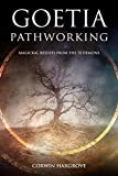 Goetia Pathworking: Magickal Results from The 72 Demons (Magick of Darkness and Light) (English Edition)