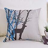 N/A 2 oreillers Canapé, Coussin Linge de Base Oreillers, Home Sofa Coussins, Coussins de siège d'auto Lumbar (Color : F, Size : 45×45cm)
