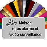 Plaque Maison sous Alarme Et Vidéosurveillance Autocollante – Plaque De Maison PVC Adhésive 10 x 5 cm – 21 Couleurs Disponibles (Gris Mat)