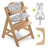 Hauck - Chaise Haute Bébé Bois Alpha Plus - Chaise Haute Évolutive, Réglable avec Harnais de Sécurité, Coussin d'Assise - Naturel Gris Nordique