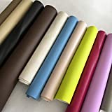 2r stock Lot de 10 découpes en similicuir souple en couleurs mixtes. Dimensions : env. 30 x 70 cm. Idéal pour travaux manuels, patchwork, décorations.