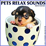 Get Used to Pets City Sounds (To Alarm Sirens)
