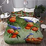 Parure de lit avec Housse de Couette en Microfibre -Corbeille de Fruits à la pêche Bluebird,Sets de Housse de Couette 160x200cm+2 taie d'oreiller 63x63cm