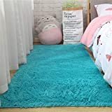 DNAMAZ Tapis Doux Salon Baie Baie fenêtre homemoderne d'entrée entrée Hall Girl de Chevet Long Fil poilue Shaggy Shaggy Grande Taille Tapis de Cheveux (Color : Sky Blue, Size : 40x60cm)