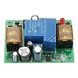 Conseil de protection de batterie faible de 12V 24V 36V 48V, panneau de protection anti-décharge d'alarme de retard 30A