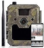 icuserver Caméra de Chasse icucam 4G - Caméra Animaux Vision Nocturne avec détecteur de Mouvement - Transmission par téléphone Portable - 40 mètres de portée - Temps de déclenchement 0,3 Sec