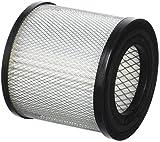 Greenstar 14082 Filtre pour aspirateur/Vide Cendre, Noir