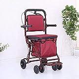 OUWTE Chaise roulante portative à Grandes Roues Pliante, Le Chariot d'achat pour Personnes âgées avec Panier d'achat