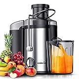 EASEHOLD Centrifugeuse Fruits et Légumes 600W(max 800W) Extracteur de Jus Electrique 2 Vitesses en Acier Inoxydable avec Récipient à Jus Pulpe Nettoyage Facile sans BPA pour Cuisine Maison