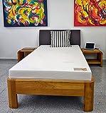 Dinaflex Matelas 110X190 MÉMOIRE DE Forme Marthe Aloe ÉPAISSEUR 17 CM,Housse Aloe Vera.FABRIQUÉ en Allemagne