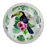 Lot de 4 poignées rondes décoratives pour armoire, meuble, porte, tiroir, toucan exotique et feuilles tropicales