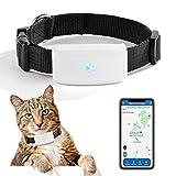 Mini Traceur GPS Animaux , Zeerkeer GPS Chien, Traceur GPS Chien Chat Animal Real Time Tracking & Activity Moniteur Tracker Tk911
