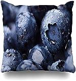 Housse de Coussin Berry Blue Dessert Wet Fresh Blueberry Macro Studio Ingredient Food Drink Purple Bio Antioxidant Home Taie d'oreiller Square Zipper Decor Taie d'oreiller18x18pouce
