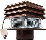 Extracteur De Fumée pour Conduit Rond 25 cm 250 mm pour Cheminée Ventilateur De Radial Chapeau Aspirateur Extracteur Électrique De Fumées pour Poêle Thermique Barbecue Modèle professionnel