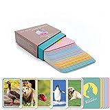 Kakaduu Jeu d'apprentissage: Mes Premiers Mots - Animaux Cartes animales (Montessori): 50 Cartes Photos: Jouets éducatifs pour Les bébés et Les Tout-Petits pour promouvoir Le vocabulaire de Base.