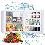 TECCPO Mini Réfrigérateur à Porte Réversible, 46L, 7 Réglages de Température, 37 dB, pour Dortoir, Bureau TAMF40