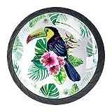 Toucan d'oiseaux exotiques et feuilles tropicales 4 pièces boutons d'armoire de cuisine poignée pour porte de tiroir placard penderie mur manteau crochets