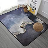 PANGLDT Tapis Chic Noble Moderne Design -Grands Tapis rectangulaires à Rayures dorées- Salon Chambre Maison Tapis Coussin de Chaise d'ordinateur-80x160cm