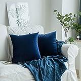 OSVINO Lot de 2 Housse Coussin Canapé Decoration Velours Ultra Doux Artistique Taie d'oreiller Confortable Zip Invisible Lit Maison Salon Chambre, Marine, 45x45cm