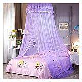 Rideaux de lit à baldaquin pour Enfants et Adultes Dôme de Fil Hexagonal crypté Moustiquaire en Tissu de Dentelle de Dessin animé pour lit Simple de 1-1,5 m (Taille: 1,2 m / 4 Pieds, Couleur: Violet)