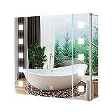 Tokvon Gondola LED Armoire de Toilette de Salle de Bain Armoire de Salle de Bain en Aluminium avec Porte Simple, Anti-buée, Prise de Rasage, Interrupteur Tactile, LED dimmable 65 x 60 cm