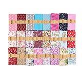 Ewtshop Lot de 25 tissus en coton pour travaux de couture 30 x 30 cm