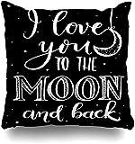 2PCS Housse de Coussin taies d'oreiller 18' Branche Coeur Love You Lune Retour Inscription HValentine Astronomie Craie Date Jour Dessiné Émotions Taie d'oreiller douce pour la peau pour canapé-lit
