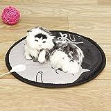 Couverture de chat de chien à 9 vitesses Couverture auto- chauffante Couverture thermique Couverture Tapis de chauffage (Color : Big)