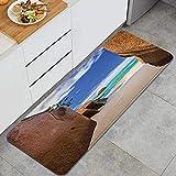 FAKAINU Tapis de Cuisine et Tapis, Beach Source d 'Argent aux Seychelles Tropical Sandy Walls Lands Lands Dreamy Scenery, Noin-SLP Comfort Floor Mats Tapis pour Cuisine, Bureau, paillasson