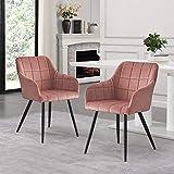 CLIPOP Lot de 2 chaises de Salle à Manger en Velours Rétro Fauteuil Scandinave avec Dossier et Accoudoir Chaise