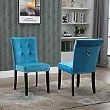 MISLD Lot de 2 chaises de salle à manger en velours avec dossier à anneau et pieds en bois Bleu clair 51 x 49 x 91 cm