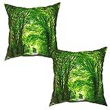 saletopk Lot de 2 Housses de Coussin taies d'oreiller,Route panoramique à Travers la forêt Verte en Angleterre,uni décorations de décoration intérieure pour canapé lit Chaise (50x50cm) x2