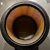 Parkside Lidl - Filtre à poussière plissé pour aspirateur- Avec grille intérieure en acier - Pour aspirateurs PNTS 23 E 1250 1300 A1 B2 C3 1400 A1 B1 C1 D1 1500 A1 B2 B3