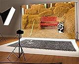 AdaCrazy 10x6.5ft Photographie Ancienne Grange Ferme Rustique Outil Râteau Rouge Chaise Bois Paille Balles Foin Vintage Rayures Planche Bois Vache Bouteille Automne Photo Enfants Adultes Portraits