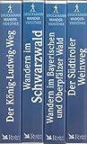 Électropompe en ligne avec joint rigide LowaraLNES 65-250/22/P45R CS4