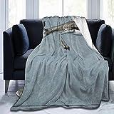 Couverture polaire Springbok en flanelle douce et chaude pour l'hiver, 127 x 165 cm, pour lit, canapé, chaise de bureau