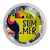 Lot de 4 boutons de tiroir ronds décoratifs pour armoire, armoire, meuble, tiroir - Motif feuilles d'été exotiques