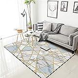 PANGLDT Tapis Chic Noble Moderne Design -Tapis géométrique doré Moderne de Style Nordique- Salon Chambre Maison Tapis Coussin de Chaise d'ordinateur-80X120cm
