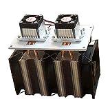 relais Version améliorée 12 1 2A 144W DIY Double tête Semiconducteur électronique réfrigérateur Radiateur Equipement de refroidissement Le côté de réfrigération peut être gelé commutateur de relais wi