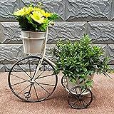 HQL Étagères de Pot de Fleur de Tricycle créatif, Chariot de Support de Plante de vélo de 3 Niveaux, Support de Rangement en Fer forgé rétro, pour Les Amoureux des Plantes,Blanc