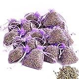 OLILLY Récolte 2020-25 Sachets Violets avec Lavande de Provence - 250 grammes (Violet, 25 Sachets)