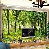Peintures murales naturelles 3D, papiers peints, paysages simples, forêt, campagne, canapé, télévision, arrière-plan, revêtement mural sans soudure, 430 × 280cm