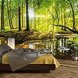 murimage Papier Peint Forêt 3D 366 x 254 cm Colle Inclus Photo Mural Bois Arbres lumière du Soleil étang Wallpaper