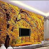 Papier peint photo Automne doré Plancher doré de Montréal Automne TV Canapé Salon Fond mural papier peint 3d gris poster pierre photo salon chambre chambre enfant-430cm×300cm